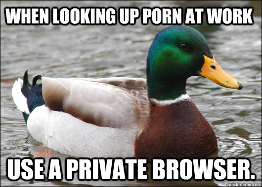 when looking up porn at work use a private browser - Actual Advice Mallard