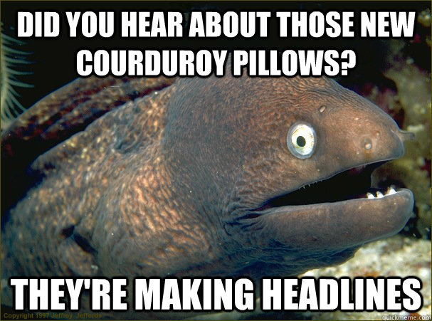 did you hear about those new courduroy pillows theyre maki - Bad Joke Eel