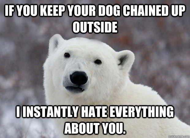 if you keep your dog chained up outside i instantly hate eve - Popular Opinion Polar Bear
