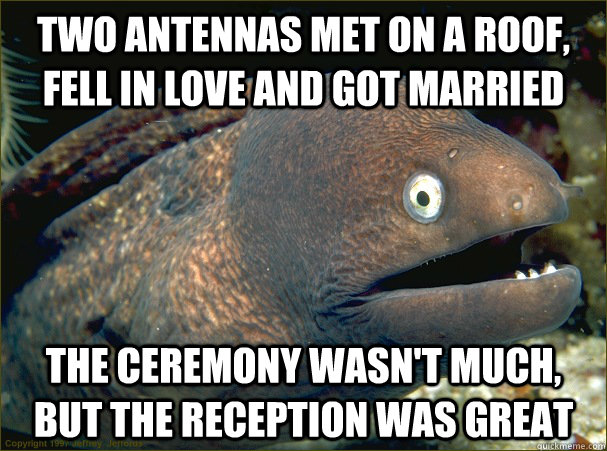 two antennas met on a roof fell in love and got married the - Bad Joke Eel