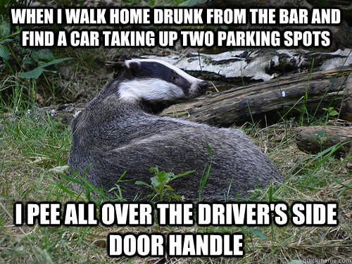 when i walk home drunk from the bar and find a car taking up - Bastard Badger