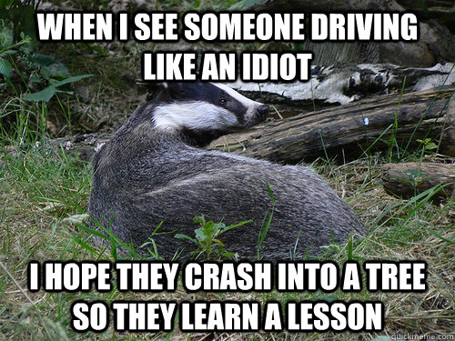 when i see someone driving like an idiot i hope they crash i - Bastard Badger