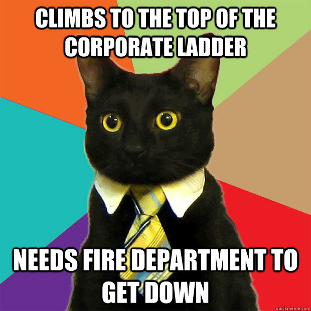 climbs to the top of the corporate ladder needs fire departm - Business Cat