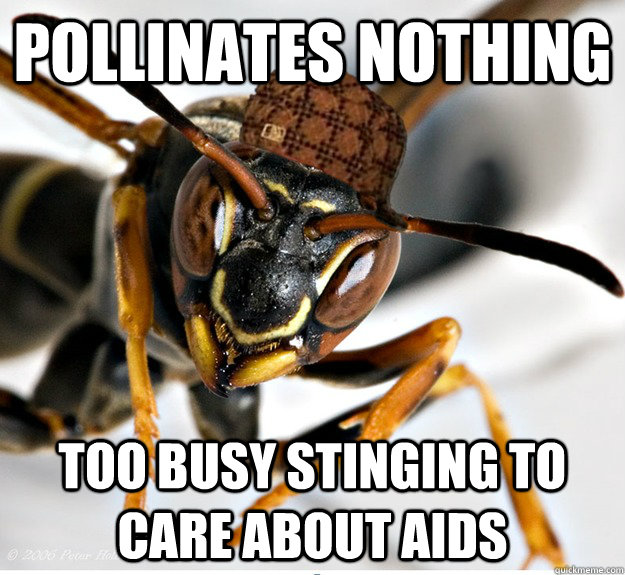 pollinates nothing too busy stinging to care about aids - 
