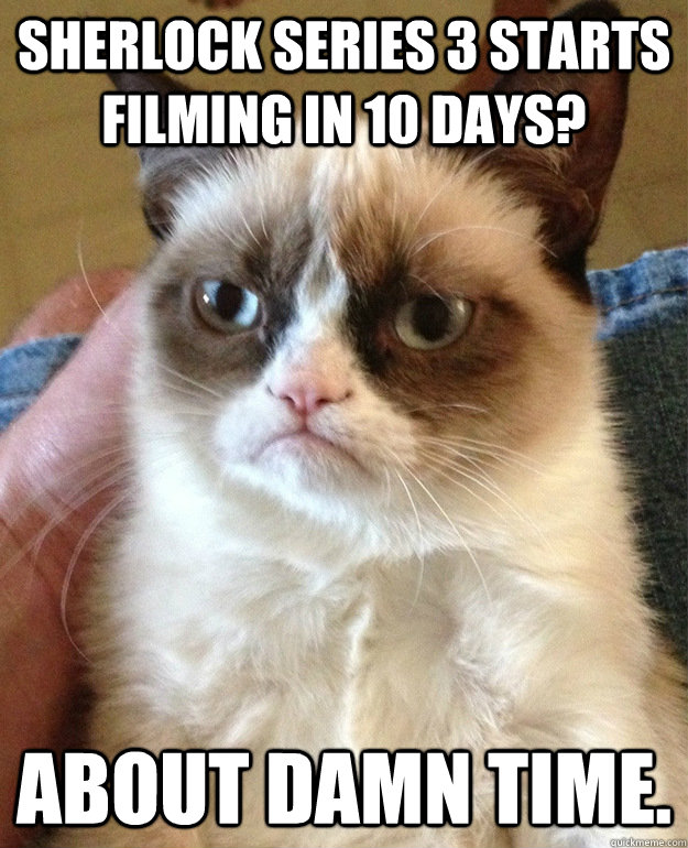 sherlock series 3 starts filming in 10 days about damn time - grumpycat