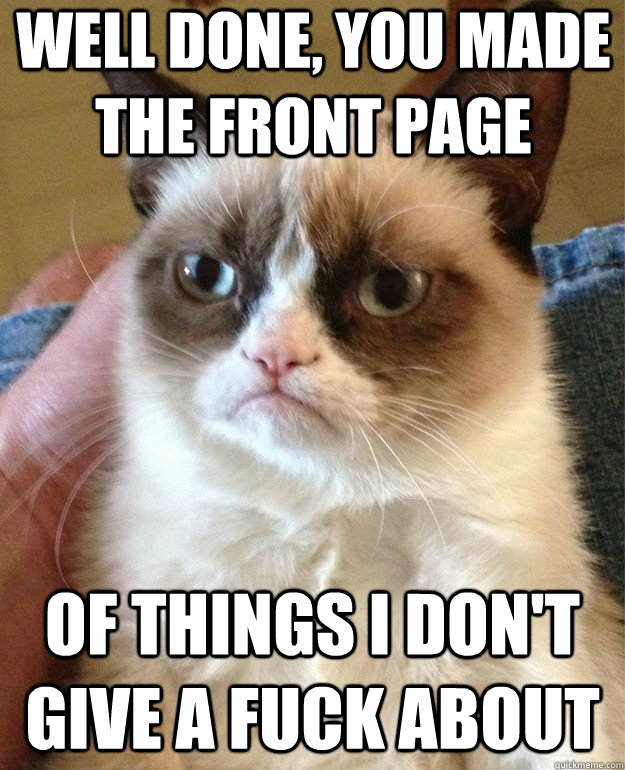 well done you made the front page of things i dont give a  - Grumpy Cat