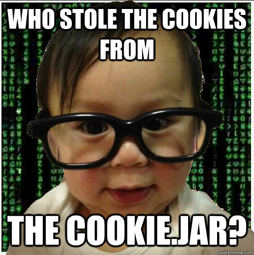 who stole the cookies from the cookiejar - Baby programmer