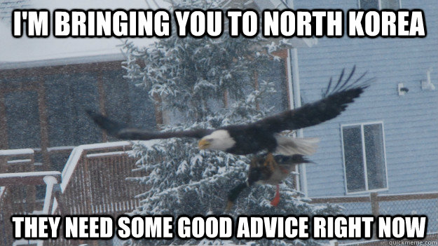 im bringing you to north korea they need some good advice r - Actual Advice Mallard