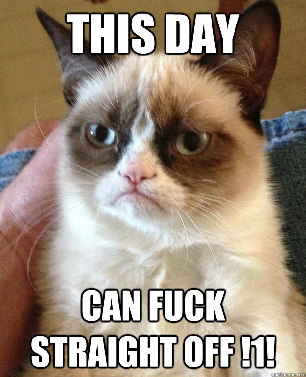 this day can fuck straight off 1  - Grumpy cat