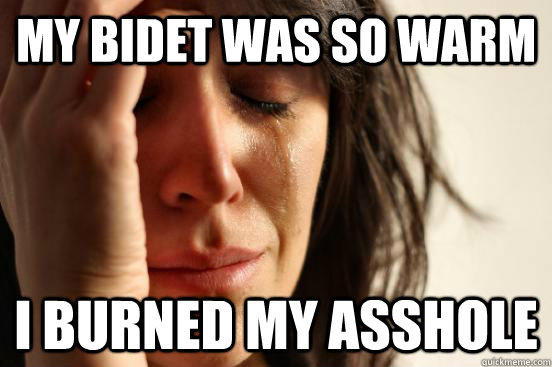 my bidet was so warm i burned my asshole - First World Problems