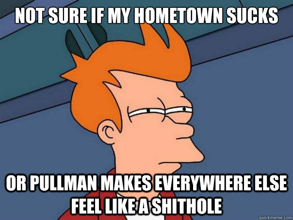 not sure if my hometown sucks or pullman makes everywhere el - Futurama Fry