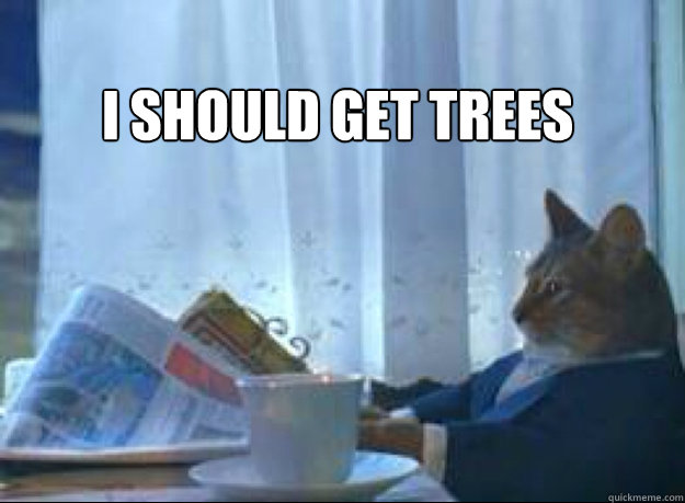 i should get trees  - I should buy a boat cat