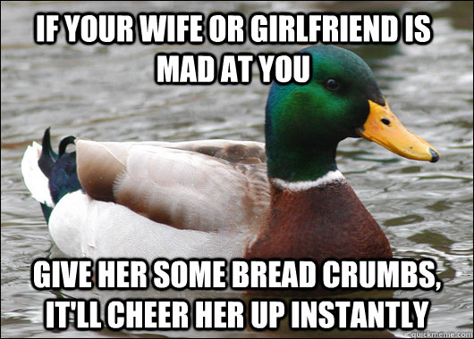 if your wife or girlfriend is mad at you give her some bread - Actual Advice Mallard