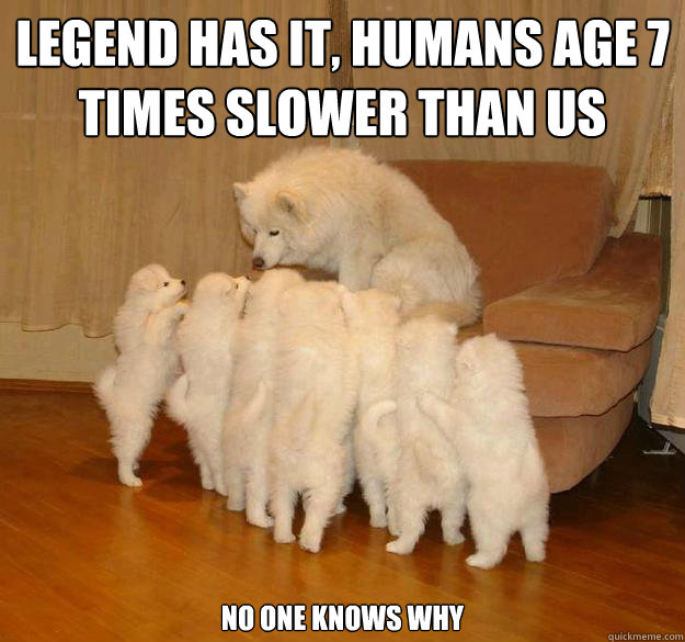 legend has it humans age 7 times slower than us no one know -