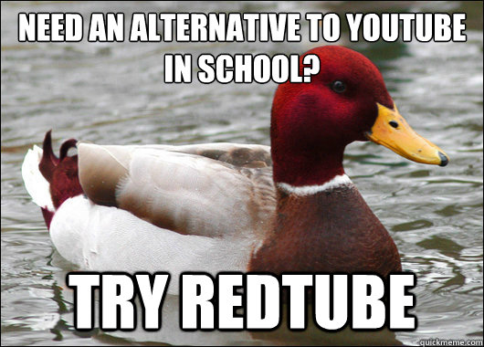 need an alternative to youtube in school try redtube - Malicious Advice Mallard