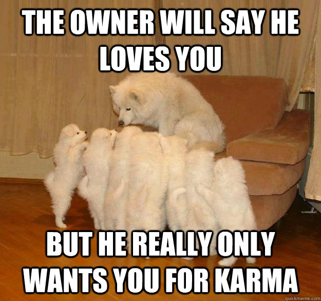 the owner will say he loves you but he really only wants you -