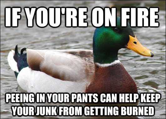 if youre on fire peeing in your pants can help keep your ju - Actual Advice Mallard