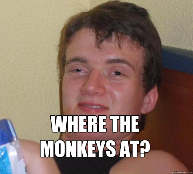 where the monkeys at  - 10 Guy