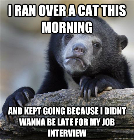 i ran over a cat this morning and kept going because i didnt - confessionbear