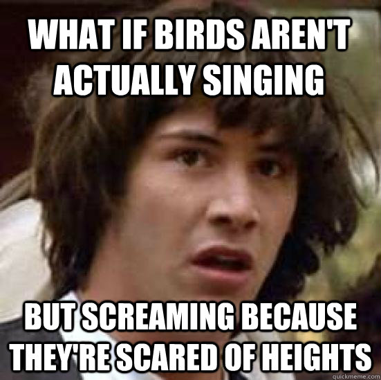 what if birds arent actually singing but screaming because  - conspiracy keanu