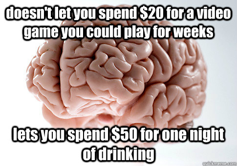 doesnt let you spend 20 for a video game you could play fo - Scumbag Brain