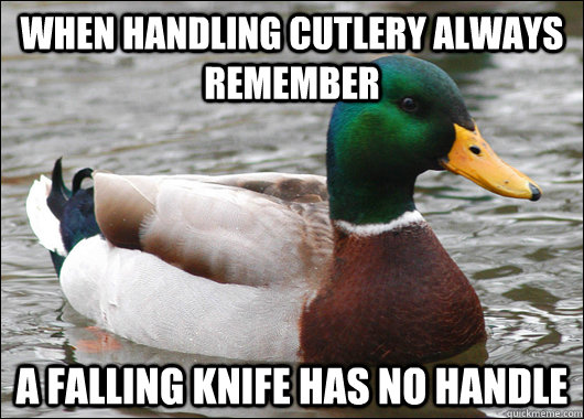 when handling cutlery always remember a falling knife has n - Actual Advice Mallard