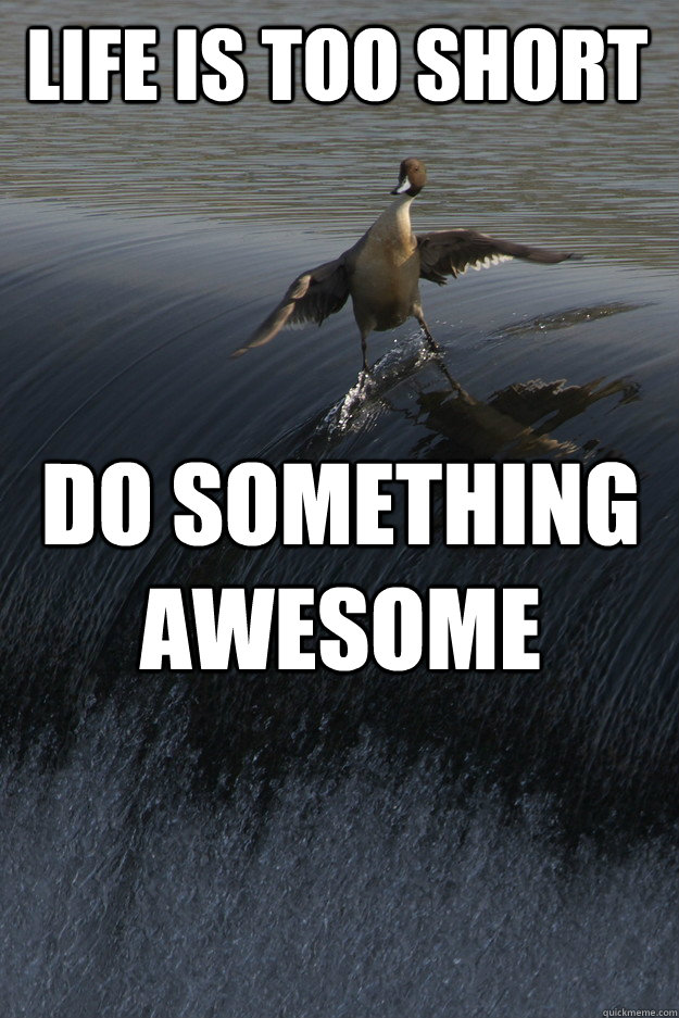 life is too short do something awesome - 