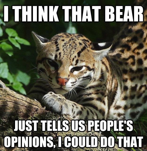i think that bear just tells us peoples opinions i could d - Opinion Ocelot