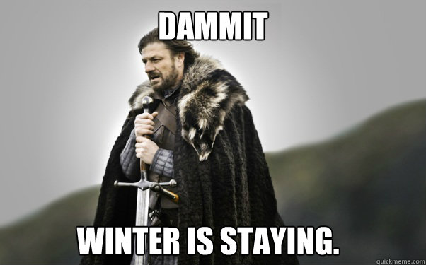 dammit winter is staying - Ned Stark