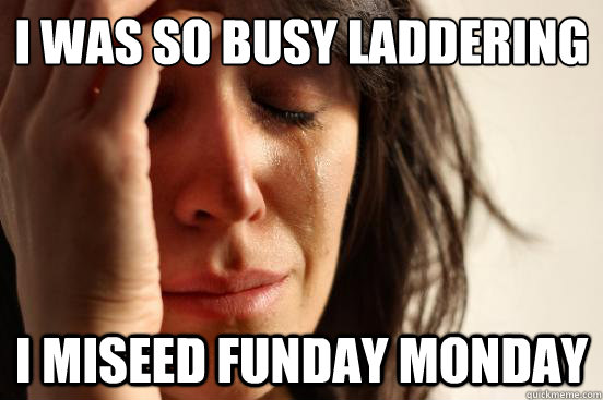 i was so busy laddering i miseed funday monday - First World Problems