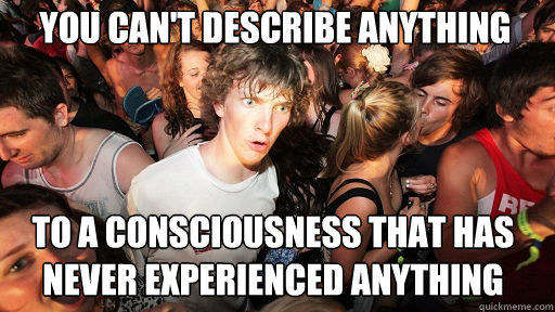 you cant describe anything to a consciousness that has neve - Sudden Clarity Clarence