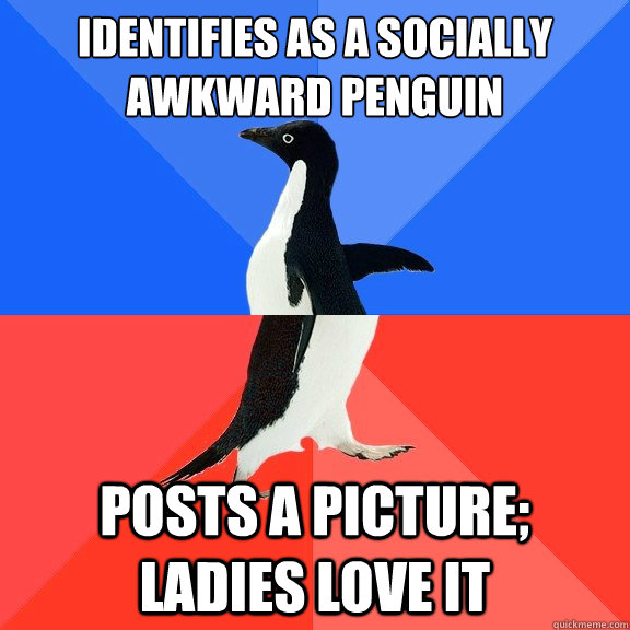 identifies as a socially awkward penguin posts a picture la - Socially Awkward Awesome Penguin