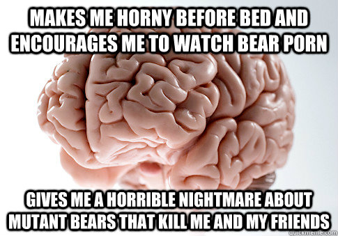 makes me horny before bed and encourages me to watch bear po - Scumbag Brain