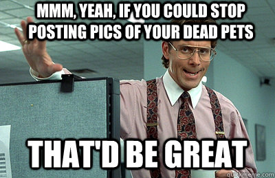 mmm yeah if you could stop posting pics of your dead pets  - Office Space