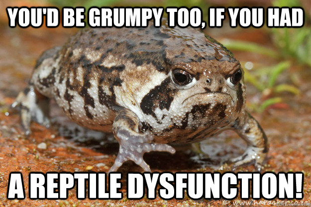 youd be grumpy too if you had a reptile dysfunction - Grumpy Toad