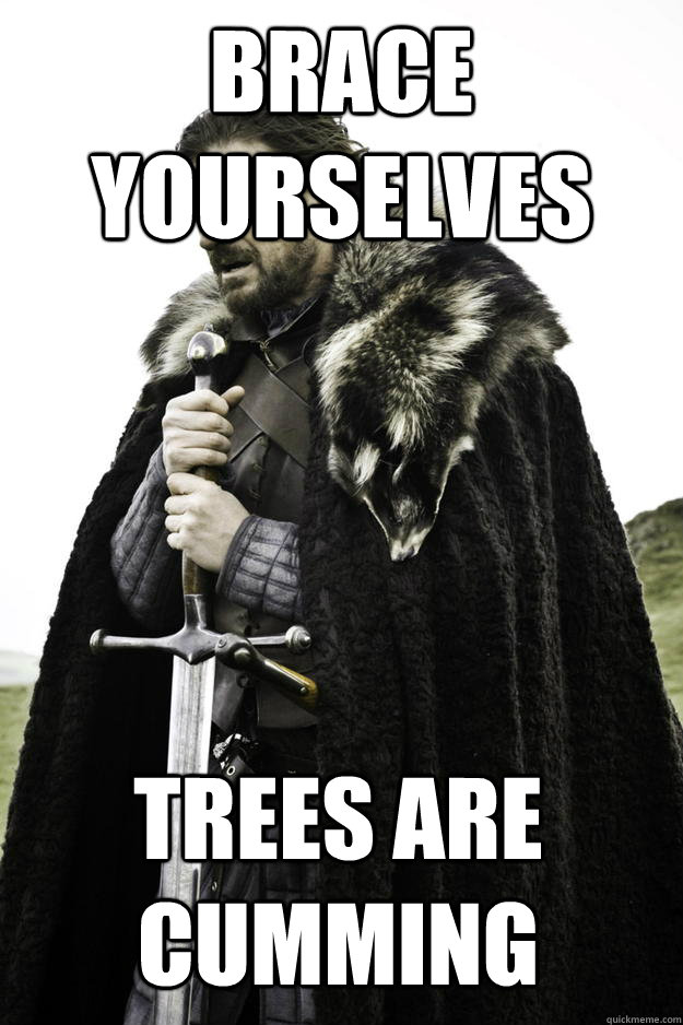 brace yourselves trees are cumming - Winter is coming