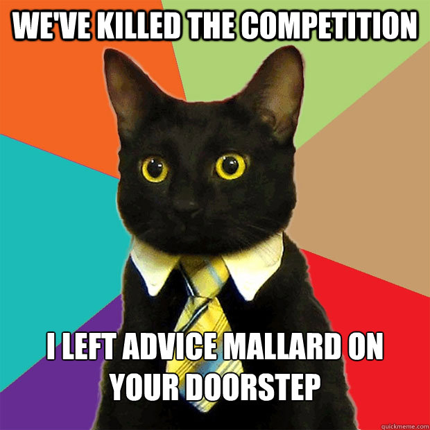 weve killed the competition i left advice mallard on your d - Business Cat