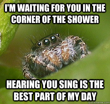 im waiting for you in the corner of the shower hearing you  - Misunderstood Spider