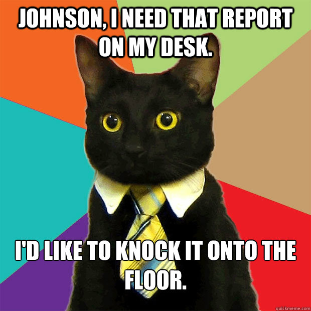 johnson i need that report on my desk id like to knock it - Business Cat