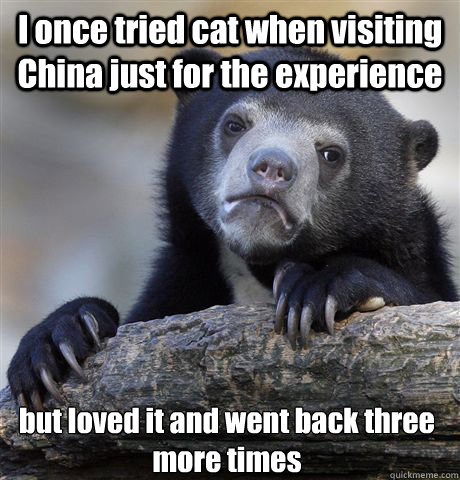 i once tried cat when visiting china just for the experience - Confession Bear