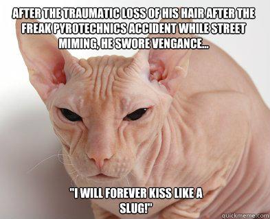 cat training medal