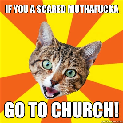 Bad Advice Cat - if you a scared muthafucka go to church