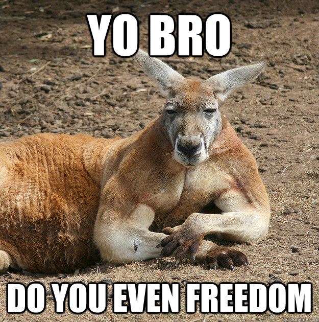 Do you even lift kangaroo - photo#33