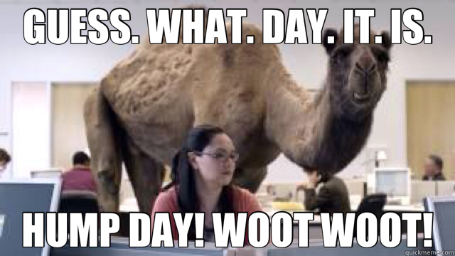 GUESS  WHAT  DAY  IT  IS  HUMP DAY  WOOT WOOT  - camelGuess What Day It Is Birthday Meme