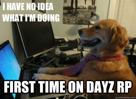 Dayzrp community memes