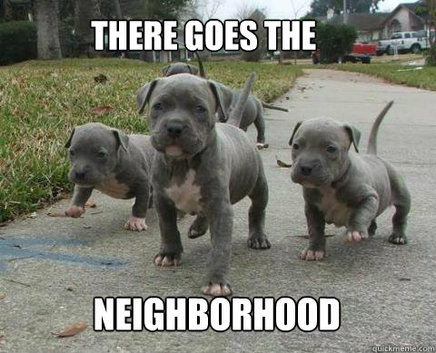 there goes the neighborhood -