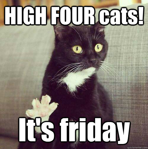 Its Friday Cat Meme