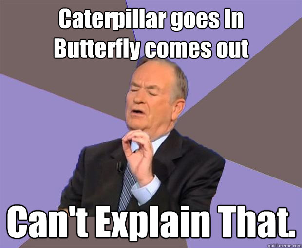 caterpillar goes in butterfly comes out cant explain that - Bill O Reilly