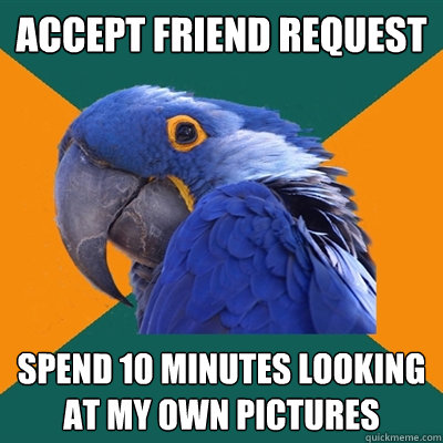 accept friend request spend 10 minutes looking at my own pic - Paranoid Parrot
