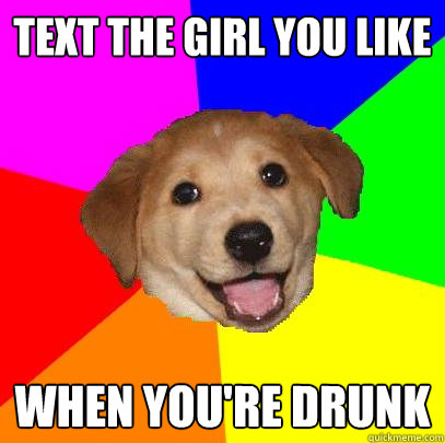 text the girl you like when youre drunk - Advice Dog